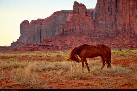 itinerario a cavallo negli Stati Uniti