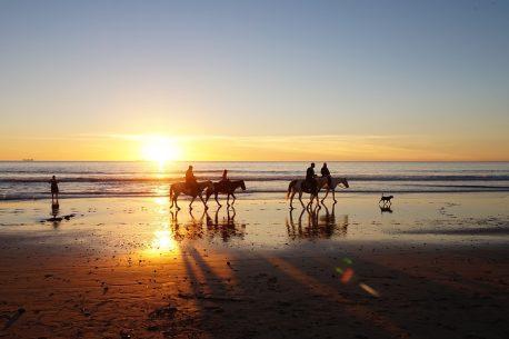 itinerario a cavallo