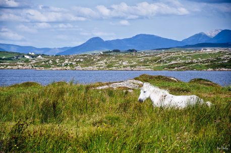 A cavallo nel Connemara in Irlanda