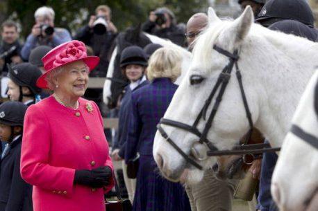 cavalli regina Elisabetta