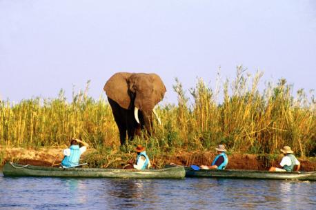 Safari a cavallo nel Parco Nazionale dello Zambesi
