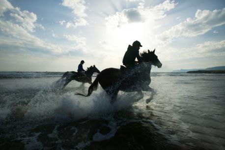 Tarifa a cavallo