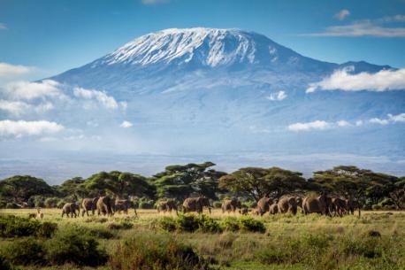 Trekking a cavallo alla scoperta del Kilimanjaro