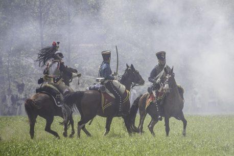 cavalli e storia