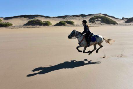 Viaggio a cavallo ad Agadir in Marocco