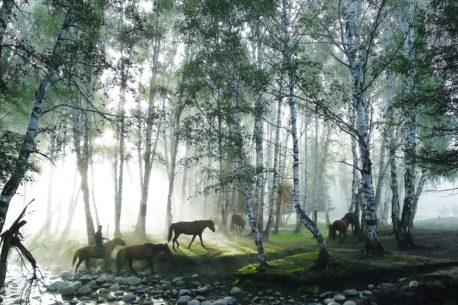 Trekking a cavallo nelle Azzorre