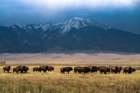 Vacanza a cavallo in Colorado USA