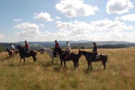 Viaggio a cavallo in Polonia nelle montagne Bieszczady