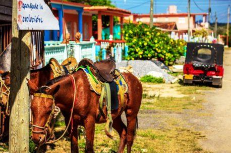 Vacanza a cavallo a Cuba
