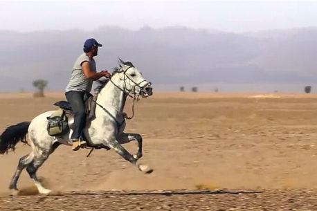 Viaggio a cavallo nel Sahara