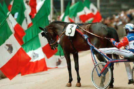 Varenne la vita di un cavallo da leggenda
