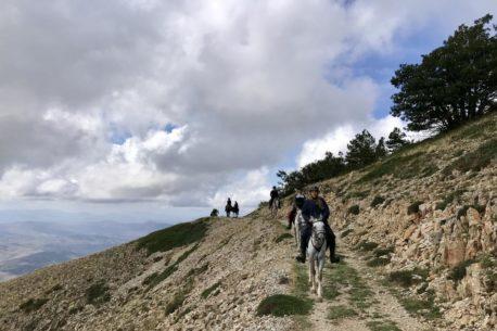 passeggiate a cavallo Sicilia