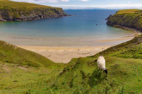 Irlanda a cavallo