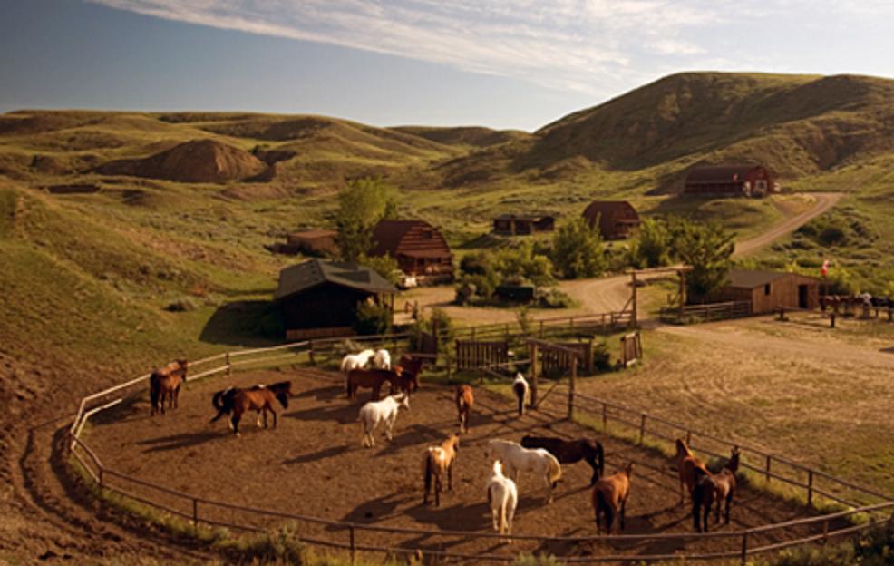 ranch vicino a vancouver