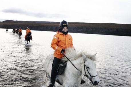 Andare a cavallo in Islanda