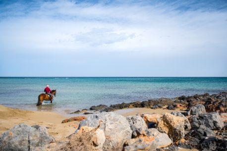 passeggiate a cavallo a Creta