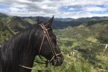 a cavallo sul Cotopaxi
