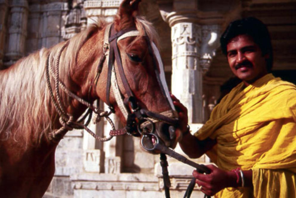 Visitare il Rajasthan a cavallo