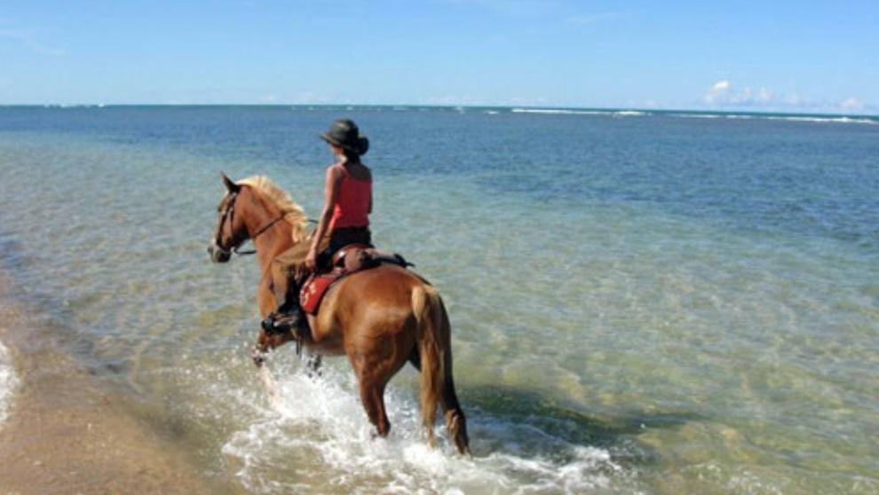 cosa vedere in brasile a cavallo