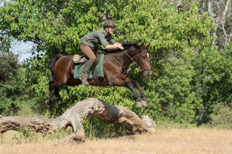 safari a cavallo valle Limpopo
