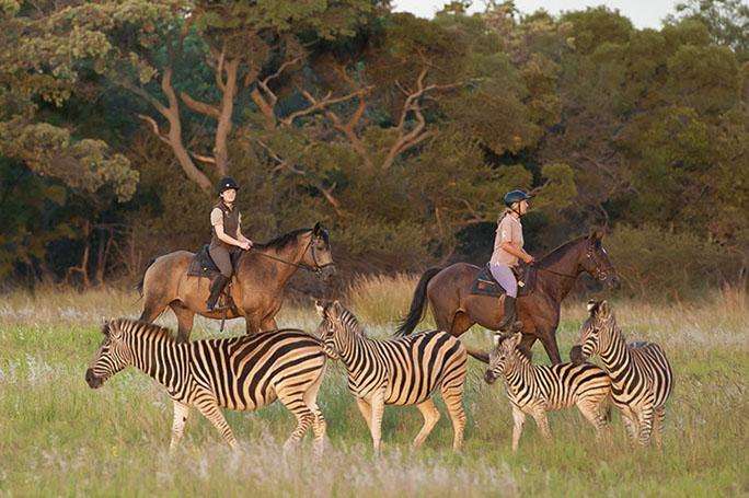 safari a cavallo sudafrica botswana