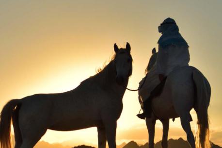 passeggiate a cavallo sul Mar Rosso