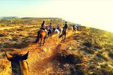 escursioni a cavallo Malta